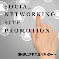 SOCIAL NETWORKING SITE PROMOTION